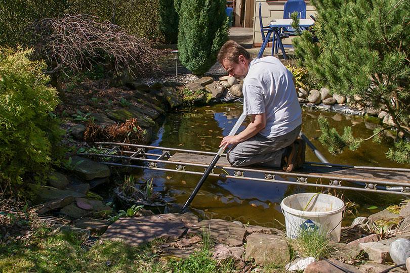 Gartenteich reinigen im fr hjahr tipps von husmann galabau for Teich mit fischen