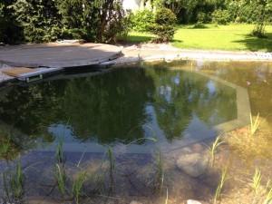 schwimmteich-fertig