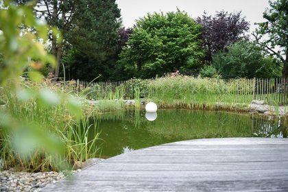 https://www.husmann-gartenbau.de/wp-content/uploads/2014/06/vom-pool-zum-schwimmteich-420x280.jpg