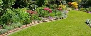 Pflegeleichter Garten 2