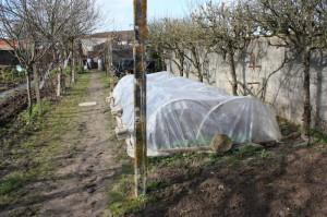 Gartenarbeit Dez 2