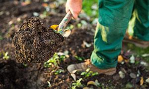 facharbeiter-garten-landschaftsbau