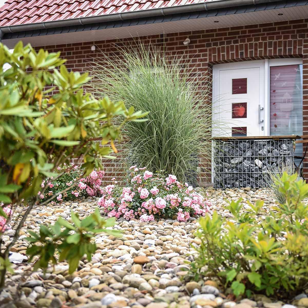 Vorgartengestaltung im raum wilhelmshaven wittmund jever for Vorgartengestaltung bilder