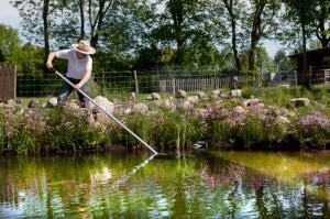 Gartenteich Reinigen Im Fruhjahr ǀ Tipps Von Husmann Galabau